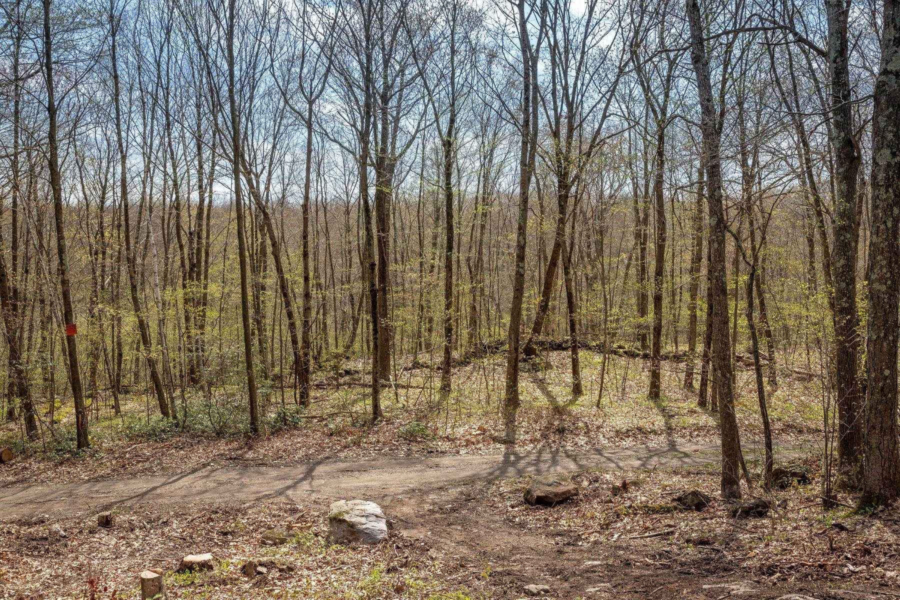 Land for Sale at Incredible Opportunity 00 Cunningham Road Warren, Connecticut 06754 United States